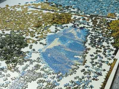 puzzle complicato