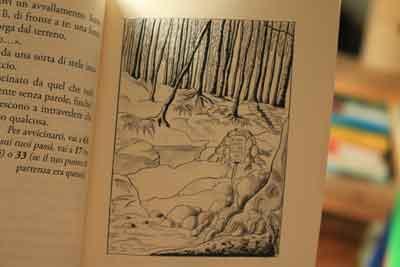 illustrazioni child wood