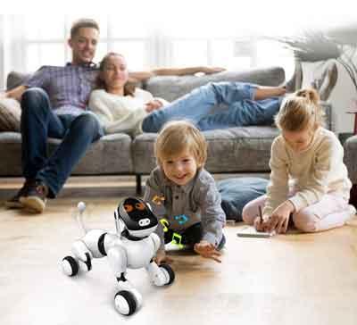 Puppy Go Anysun cane robot