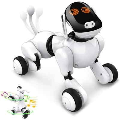 cane robot Puppy Go Anysun